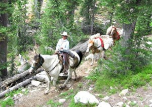 Sawtooth Outfitters Trail Rides